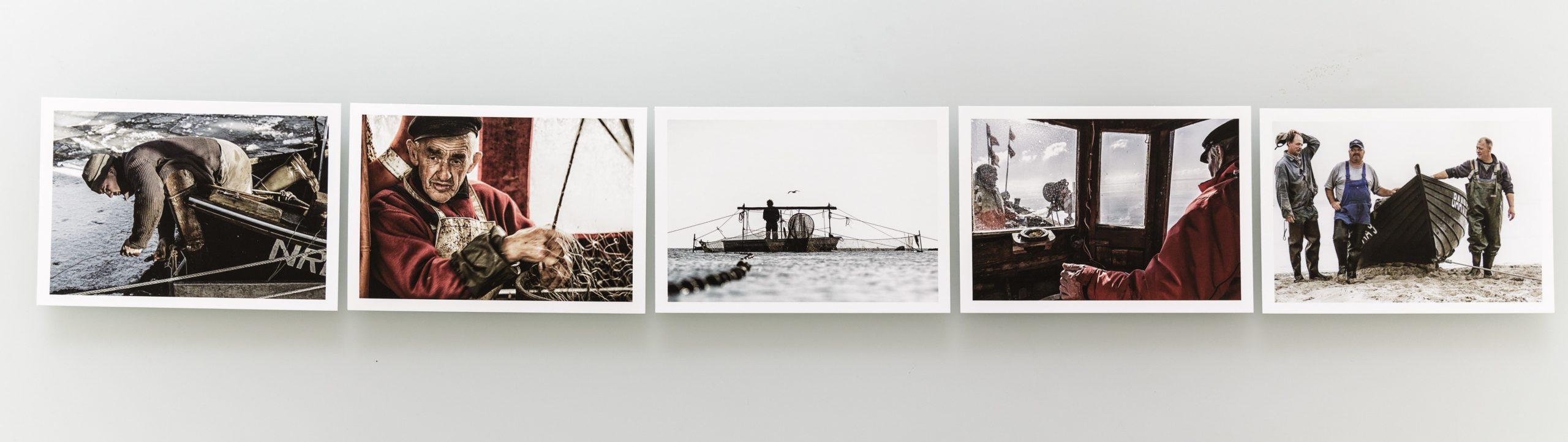ZUM FISCHEN GEBOREN / Set of postcards